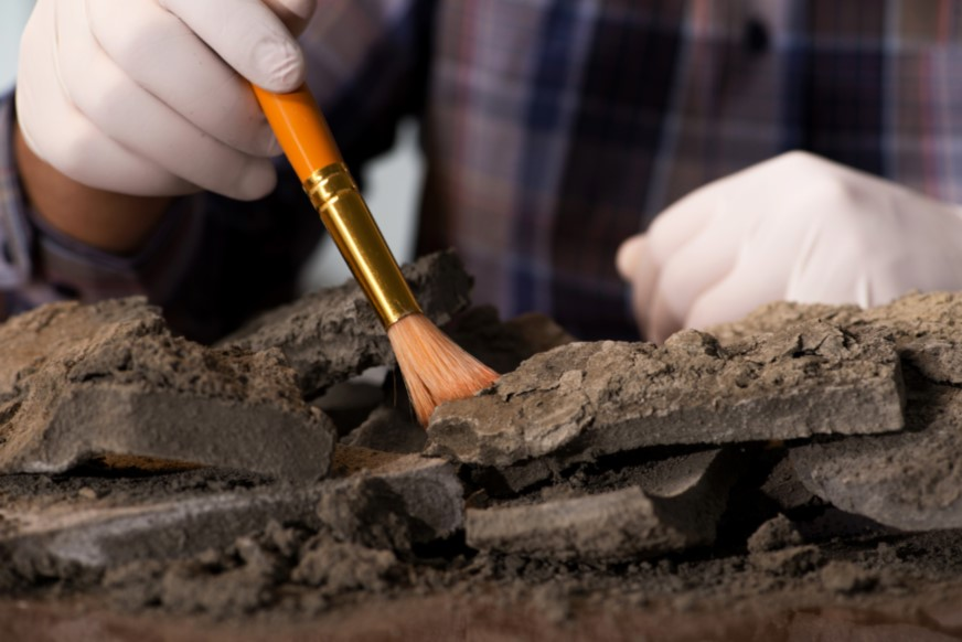 Digging the Past Archaeology Day